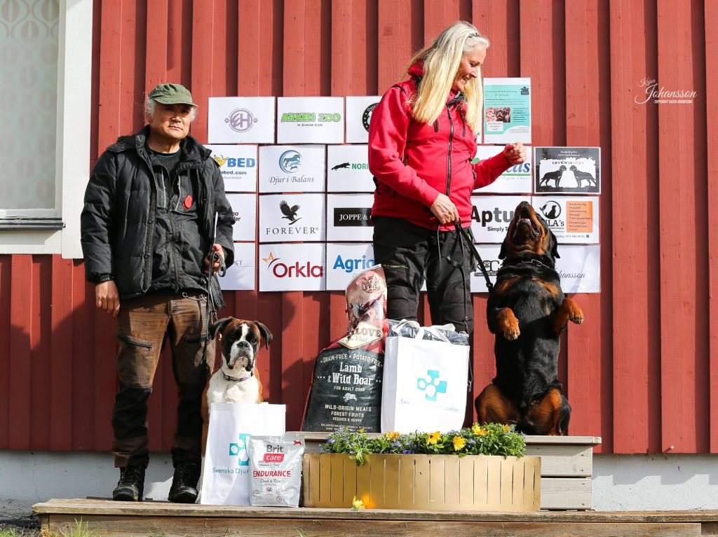 Foto Kajsa Johansson